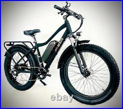 26 TRUE 1000W Electric E Bike Fat Tire Snow Mountain Bicycle Li-Battery Samsung