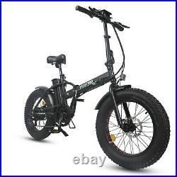 ECOTRIC 20 Folding Fat Tire Electric Bicycle 48V 500W e Bike E-Bike