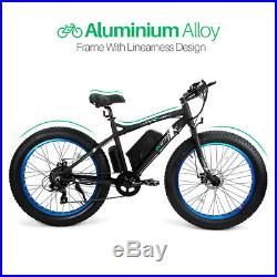 ECOTRIC 26 Mountain Beach Electric Bicycle e-Bike Removable Battery 7 Speed NEW