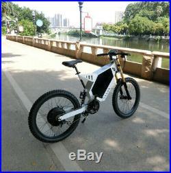 Electric bicycle eBike Stealth Bomber e-Bike