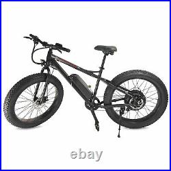 Fat Tire Electric Bike Powerful Removable Lithium Battery Ebike 500W 48V/10AH