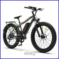 GLW S07-B/C/D 750W Electric Bicycle 48V/13A LiBattery 26 FatTire Rear Rack Ebike