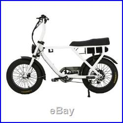 Our fab Double Seated Cargo Fat Tyre 20 E Bike, With 500with36v smart Controller