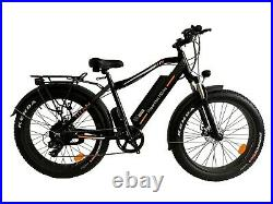 Super Fat ebike with 1000W motor 48v Lithium Ion Battery fat tire electric bike